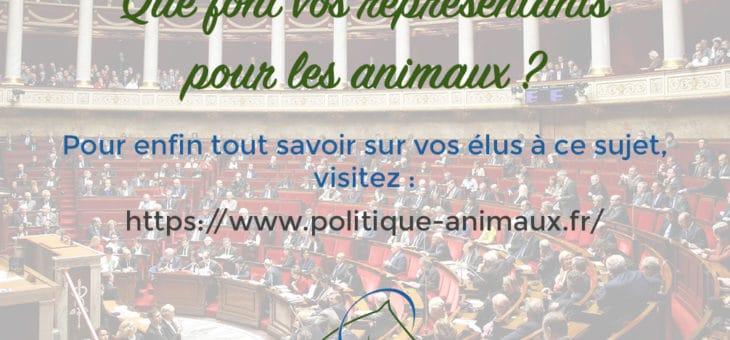 Protection animale, que font réellement nos élus à ce sujet ?