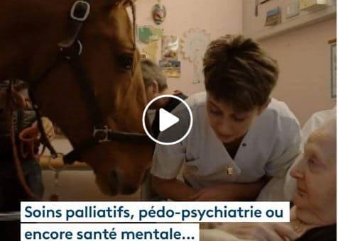 Le cheval Peyo est passé au chevet des patients de l'hôpital !