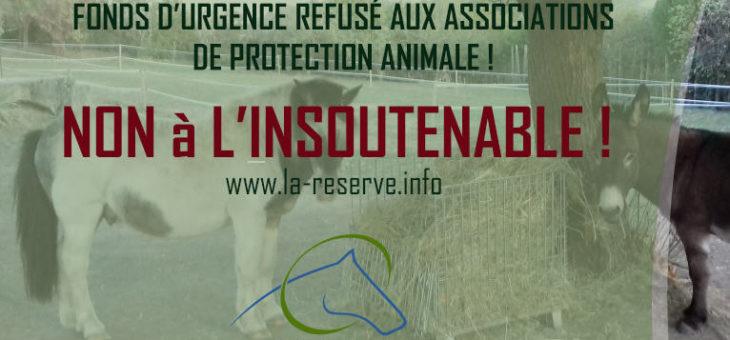 85 personnalités prennent la défense des associations de protection animale