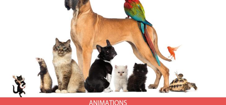 Fête Mondiale des Animaux 06 et 07 Octobre – La SPA de Brignais nous invite à cet événement !